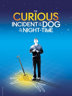 The Curious Incident of the Dog in the Night-time Pdf