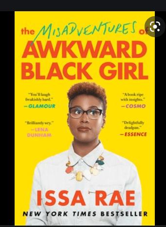The Mis-adventures of Awkward Black Girl PDF