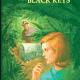 The Clue of the Black Keys PDF