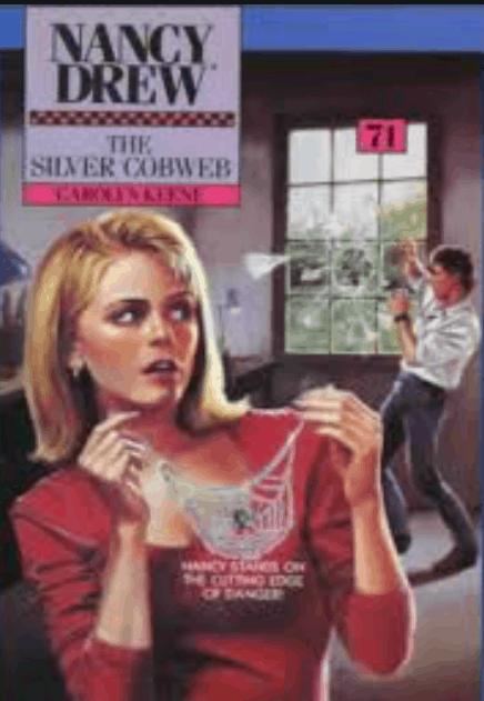 The Silver Cobweb PDF